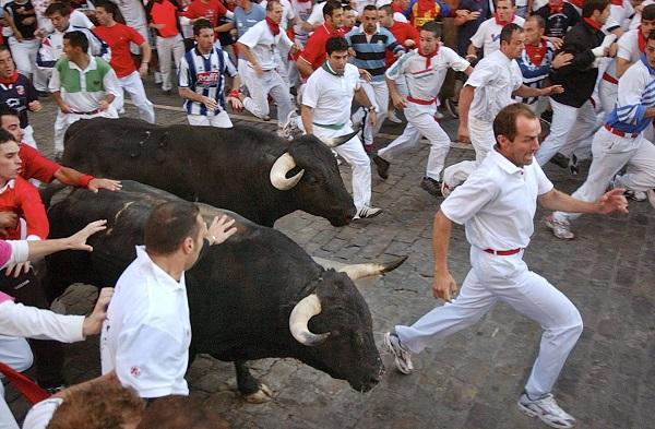 Festival du taureau (Fiesta de San Fermín)