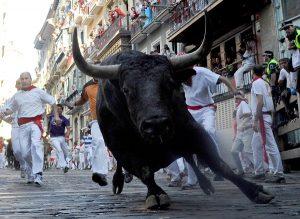 le festival du taureau en Espagne