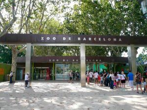 Côtoyer les animaux de Barcelone