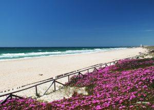Plage d'El Palmar belles plages andalousie