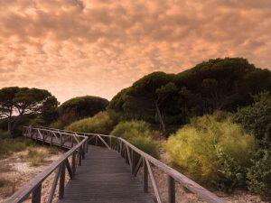 plus belles plages d'Andalousie en Espagne
