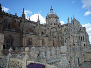 Tour Mocha Salamanca