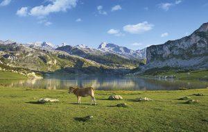 Parc national des Pics Europe Espagne