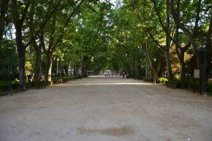 parc d' Abelardo Sanchez