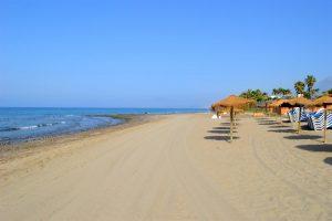 Playa Del Alicate