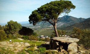 Le site mégalithique de Roses