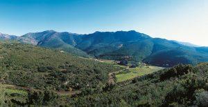 Le parc Naturel de la Serra de l'Albera