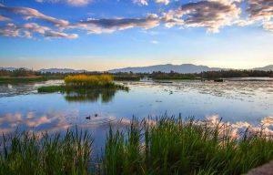 le parc naturel des Aiguamolls